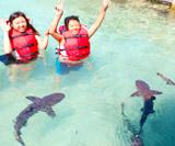 Snorkeling, Diving, dan Penangkaran Hiu di Karimun Jawa #Day 3